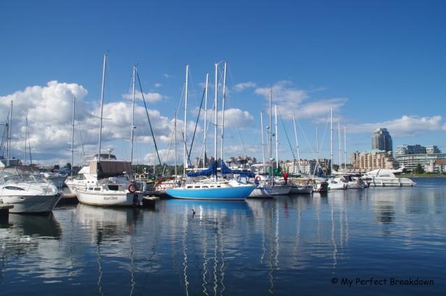 The marina at Fisherman's Wharf to buy fresh and delicious crab